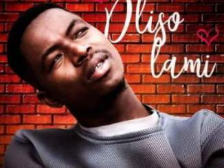 Bhizer Dliso Lami Ft. Fey M Mp3 Download Fakaza Music
