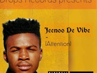 Jeenoo De Vibe Attention Mp3 Fakaza Music Download