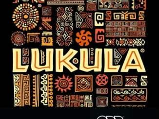 Leroy Styles & SAWI Lukula Mp3 Download Fakaza Music