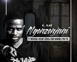 Lui Ngenzenjani Mp3 Download Fakaza Music