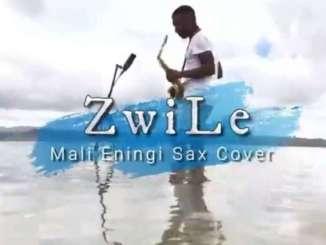 Big Zulu Imali Eningi (Zwile Sax Cover) Mp3 Fakaza Music Download