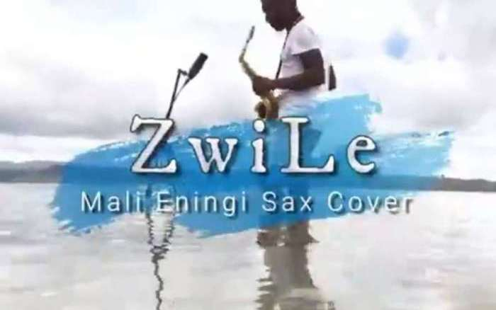 Big Zulu Imali Eningi (Zwile Sax Cover) Mp3 Fakaza Music Download