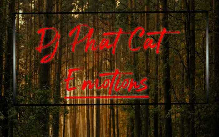 Dj Phat Cat Emotions Mp3 Fakaza Music Download