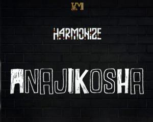 Harmonize Anajikosha Mp3 Fakaza Music Download