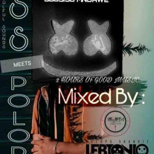 LebtoniQ Polopo 14 Mix (DSS Meets POLOPO Edition) Mp3 Fakaza Music Download
