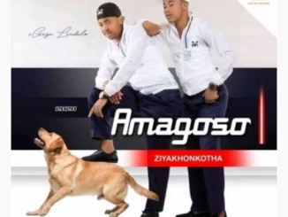 Amagoso Ziyakhonkotha Mp3 Fakaza Music Download