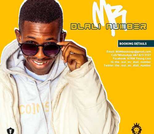 Mr Dlali Number Wrong Impression Mp3 Download