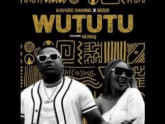 Kaygee Daking x Bizizi Wututu MP3 Download Fakaza