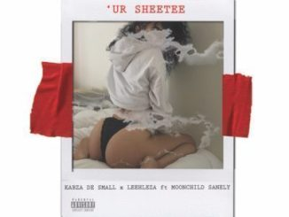 Kabza De Small & Leehleza – Ur Sheetee Ft. Moonchild Sanelly mp3 download