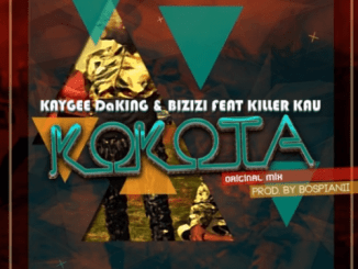KayGee DaKing & Bizizi – Kokota Ft Killer Kau mp3 download