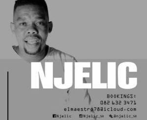 Njelic – Garage Mix Vol 42 mp3 download