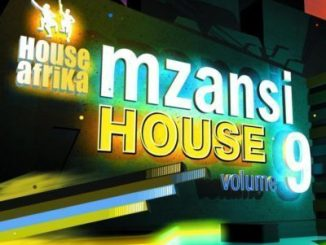 ALBUM: House Afrika Presents – Mzansi House Vol 9 Kelvin Momo Comes In Colours