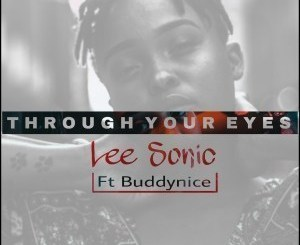 Lee Sonic & Buddynice – Through Your Eyes (Remixes Part2)