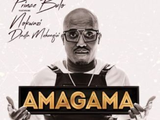 Prince Bulo Amagama Ft. Nokwazi & Dladla Mshunqisi) [Pastor Snow's Afro Mix] Mp3 Download