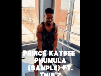 DOWNLOAD Prince Kaybee Phumula (Sample) Mp3 Ft. Thulz