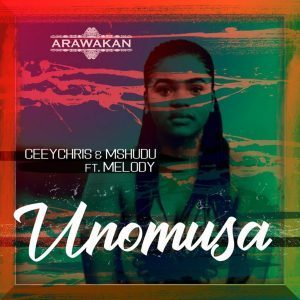 DOWNLOAD CeeyChris & Mshudu Unomusa Ft. Melody Mp3
