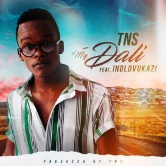 DOWNLOAD TNS My Dali Ft. Indlovukazi (Techno Bros & House Villains Bootleg) Mp3