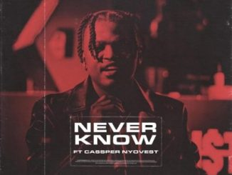 DOWNLOAD Focalistic Never Know Ft. Cassper Nyovest Mp3