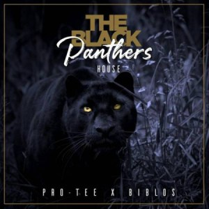 Pro-Tee & Biblos Black Panther House Album Mp3 Download