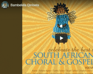 VIDEO: Mthunzi Namba – Bambelela Qinisela download