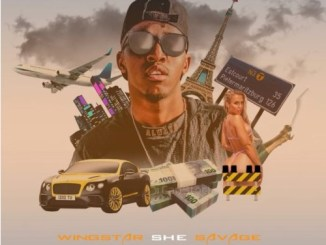 Wingstar – She Savage MP3 download