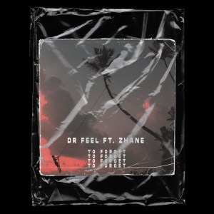 DOWNLOAD Dr Feel To Forget Ft. Zhane Mp3