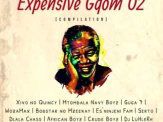 DOWNLOAD Isigoila Se Gqom Ent Expensive Gqom O2 Compilation Album Zip