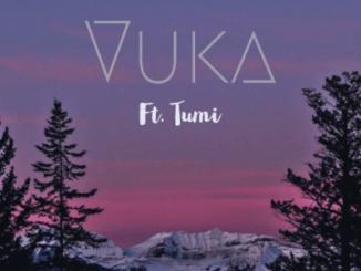 DOWNLOAD Phonomental MusiQ – Vuka Ft. Tumi Mp3