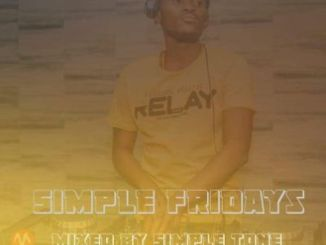 DOWNLOAD Simple Tone Simple Fridays Vol. 008 Mix Mp3