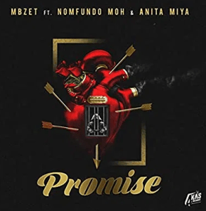 MBzet – Promise Ft. Anita Miya Moh & Anita Miya mp3 download