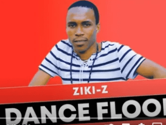 Ziki-Z – Dance Floor (Original Mix) mp3 download