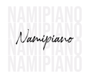 Smallz – Everybody Say T (Namipiano Remix) mp3 download