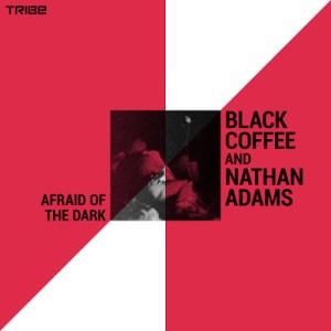 Black Coffee & Nathan Adams – Afraid of the Dark mp3 download