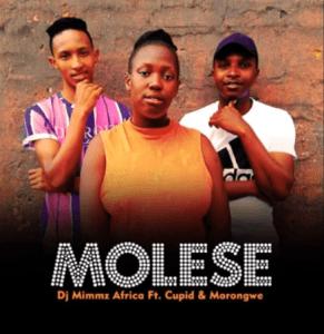 Dj Mimmz Africa Molese Mp3 Download