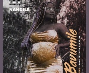 Nandile Bavumile Mp3 Fakaza Download