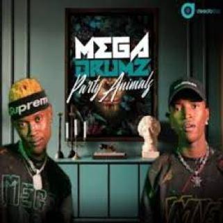 Megadrumz – Shake the Room Ft. DJ R-Voonah mp3 download
