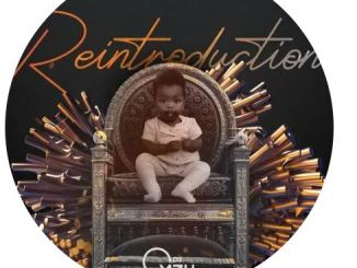 EP: Dj Mzu – ReIntroduction zip file