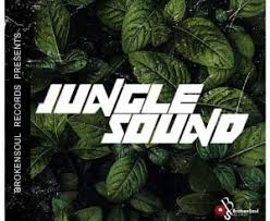 NakedSoul, Mash_P & Thekidd – Jungle Sound (Original Mix) mp3 download