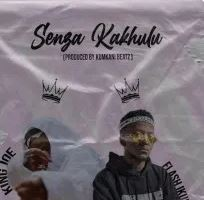 Joe King – Senza Kakhulu Ft. Flash Ikumkani mp3 download
