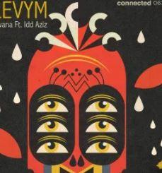 LevyM – Mwana Ft. Idd Aziz mp3download