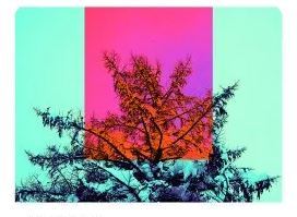 Studio Apartment & Monique Bingham – Sun Ra Was Right (Original Mix) mp3download