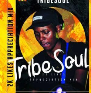 TribeSoul – 2K Appreciation Mixtape mp3 download