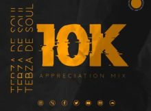 DOWNLOAD mp3: Tebza De SouL 10K Appreciation Mix fakaza 2019 2020 com music hiphopza zamusic flexyjam iminathi gqom amapiano afrohouse mp3 download