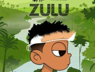 MIXTAPE: Nasty C & DJ Whoo Kid – Zulu