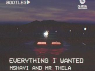 Mr Thela & Mshayi – Everything I Wanted (Bootleg)