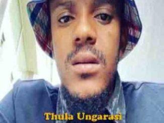 Kabza De Small Ft. Samthing Soweto – Akulaleki Kabza De Small – Udriver (Unmastered) Ft. Dladla Mshunqisi kabza de small thula ungarasi