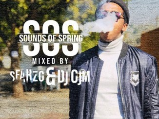 Sounds of spring (S.O.S) Guest mixed by Sfarzo & Dj OjM