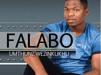 falabo khuzwayo 2019