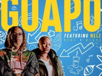 ShabZi Madallion – Guapo ft. Nelz