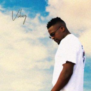 DJ Mshega – Vibez